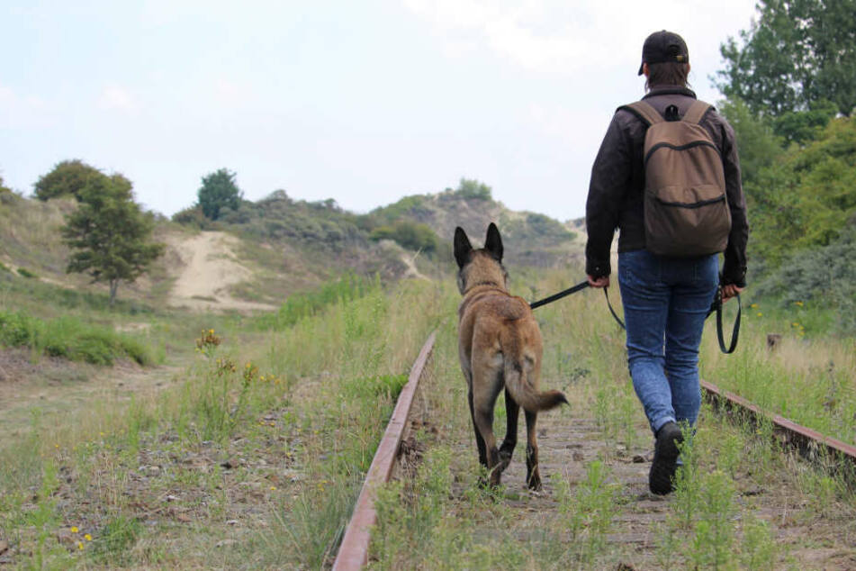 Mann geht mit Hund auf Gleisen Gassi, dann kommt ein Zug