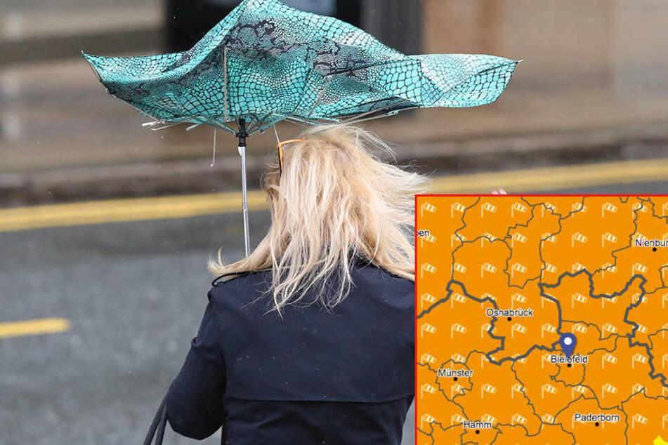 Da hilft auch kein Regenschirm mehr. (Symbolbild)
