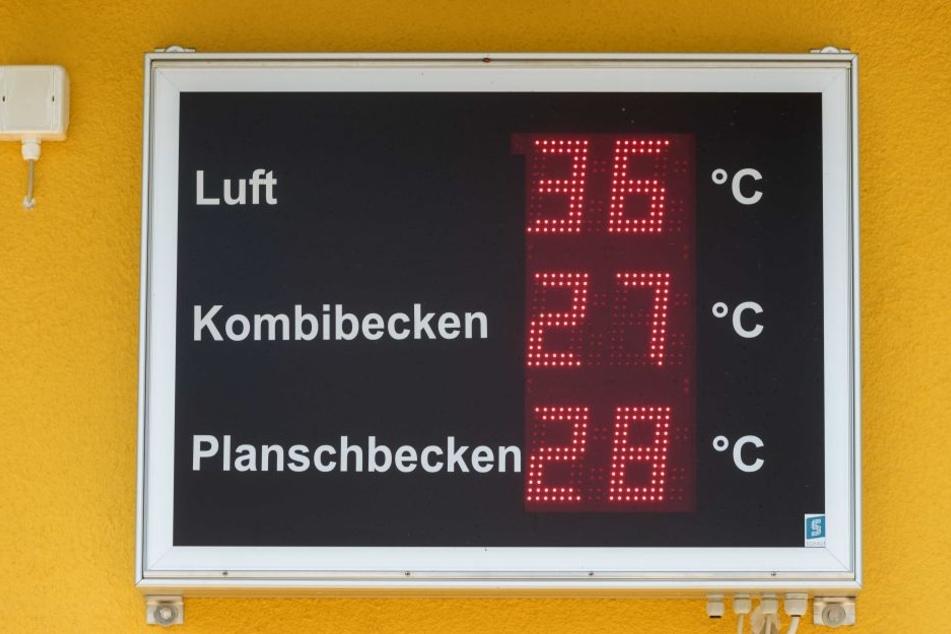 Angenehme 27 Grad Wassertemperatur, da lässt sich die aktuelle Hitze im Sonnenbad Rußdorf doch etwas einfacher überstehen.