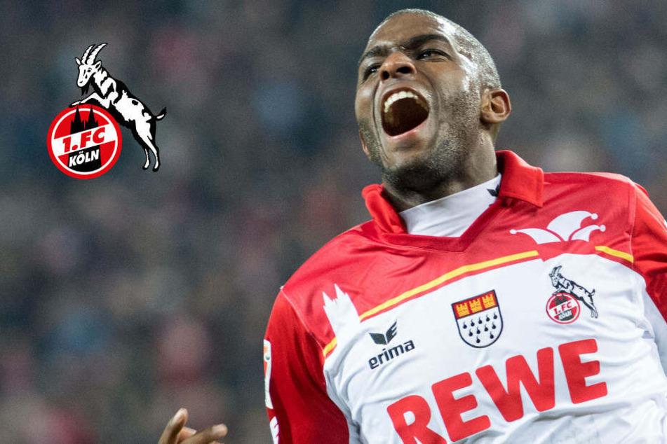 Anthony Modeste darf wieder für den 1. FC Köln jubeln.