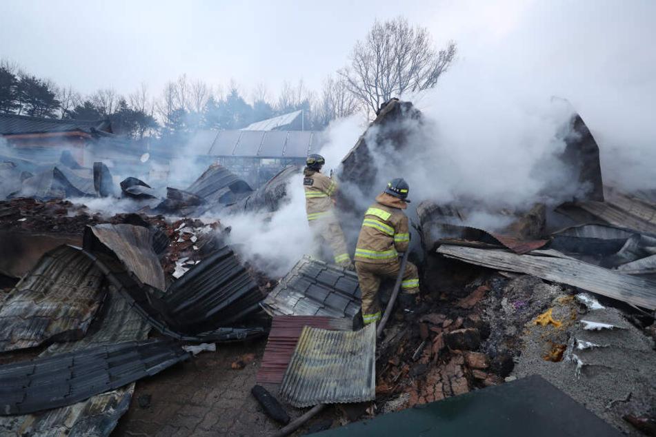 Feuerwehrleute versuchen ein brennendes Haus in Sokcho zu löschen.