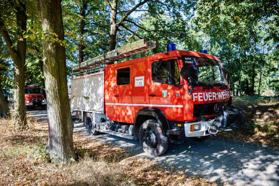 Die Feuerwehr muss immer wieder in der Königsbrücker Heide ran.