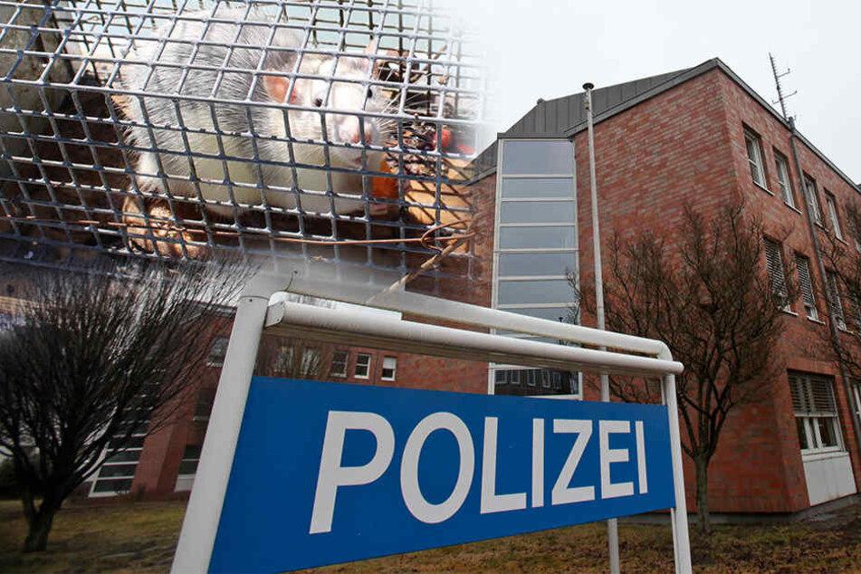 Im Polizeipräsidium in der Stapenhorststraße soll es keine großen Mängel geben.