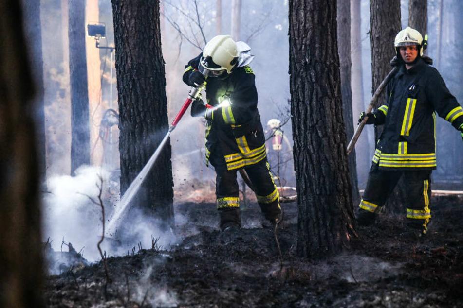 Auch in Oranienburg brannte vor wenigen Tagen ein Waldboden.
