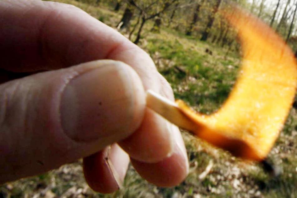 Laut Polizei war es nur Zufall, dass kein größerer Waldbrand entstand (Symbolbild).
