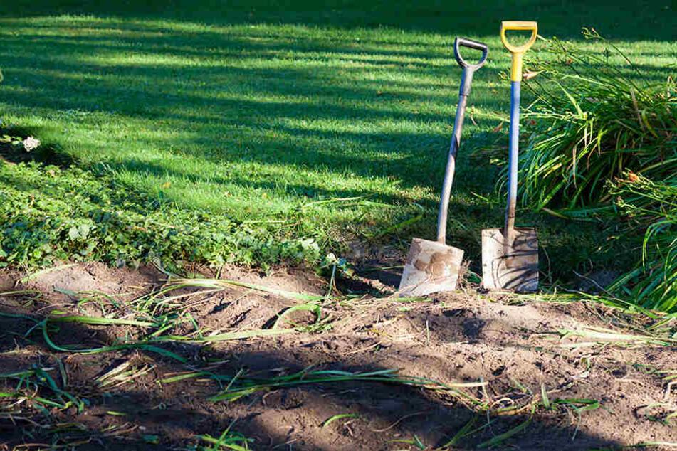 All sein Flehen half ihm nichts: Dorfbewohner begraben Mann bei lebendigem Leib