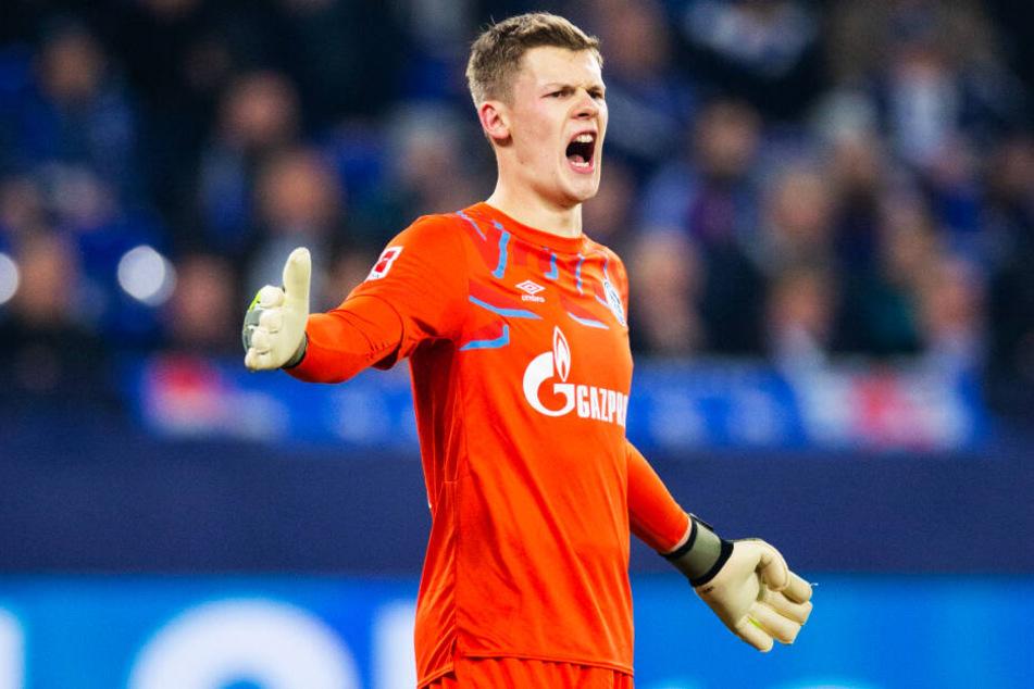 Alexander Nübel hinterlässt mit seinem Abgang im Sommer eine Lücke, die Schalke nun offenbar intern schließen will.