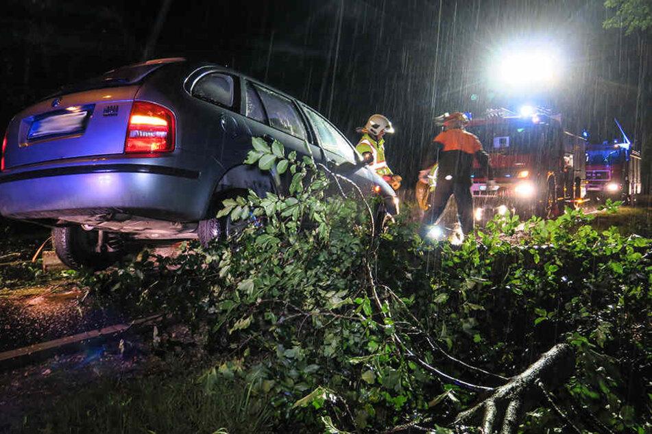 Der Skoda konnte nicht mehr rechtzeitig bremsen und landete auf dem Baum.