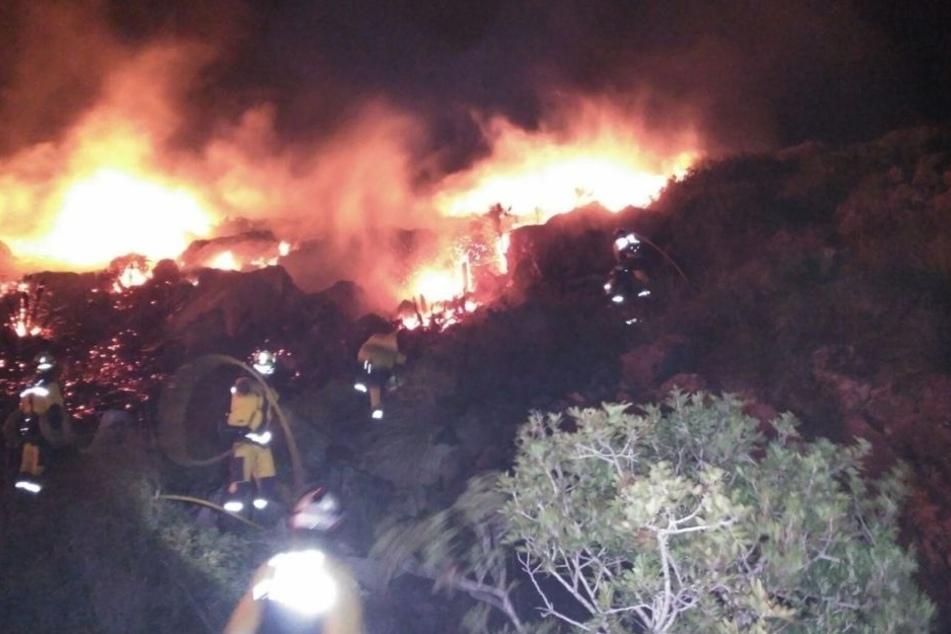 Flammen-Inferno auf Mallorca: Bewohner und Touristen bangen um ihr Leben