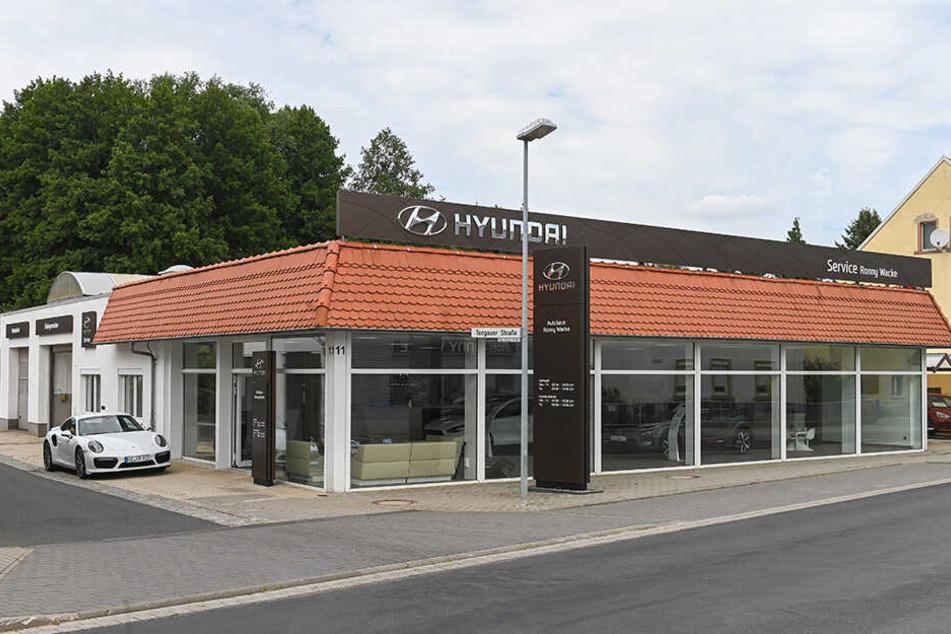 Die Mitarbeiter vom Autohaus Wacke (Filialen in Luppa, Oschatz und Riesa) steuerten schon 300 Euro für die Tierarzt-Kosten bei.