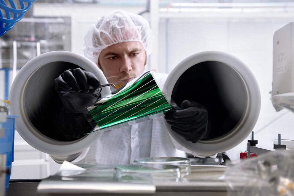 Heliatek investierte 80 Millionen Euro in seinen Dresdner Standort. Es war  2016 das größte Projekt der Wirtschaftsförderung.