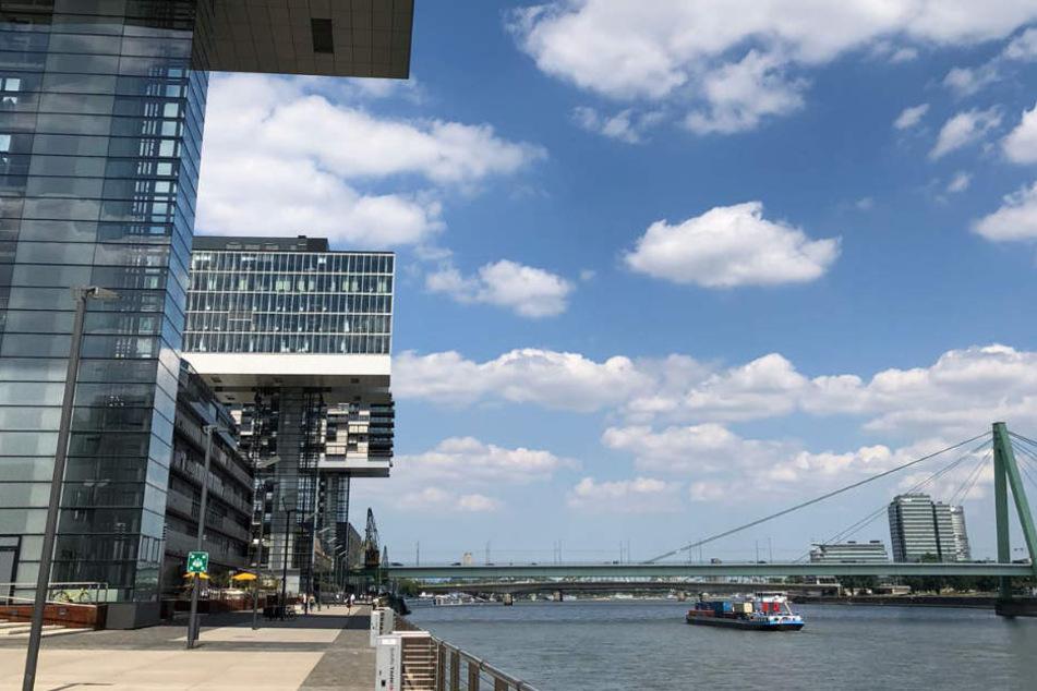 Das Event macht den Bereich unter dem Kranhaus 1 zum perfekten Picknickplatz.