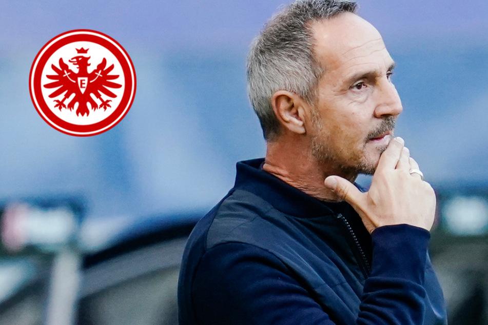 """""""Sehr heftig"""": Eintracht-Coach Hütter hadert vor Pokal-Kracher in Leverkusen mit dem DFB"""