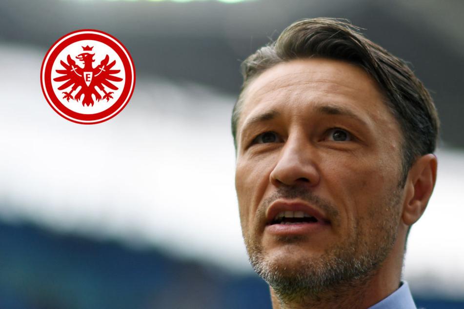 Unverständnis: Niko Kovac kann die heftige Kritik an der Spielweise seines Teams nicht nachvollziehen.