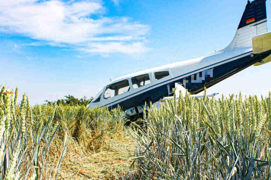 Das Foto zeigt das Flugzeugwrack in einem Weizenfeld bei Mainz-Finthen.