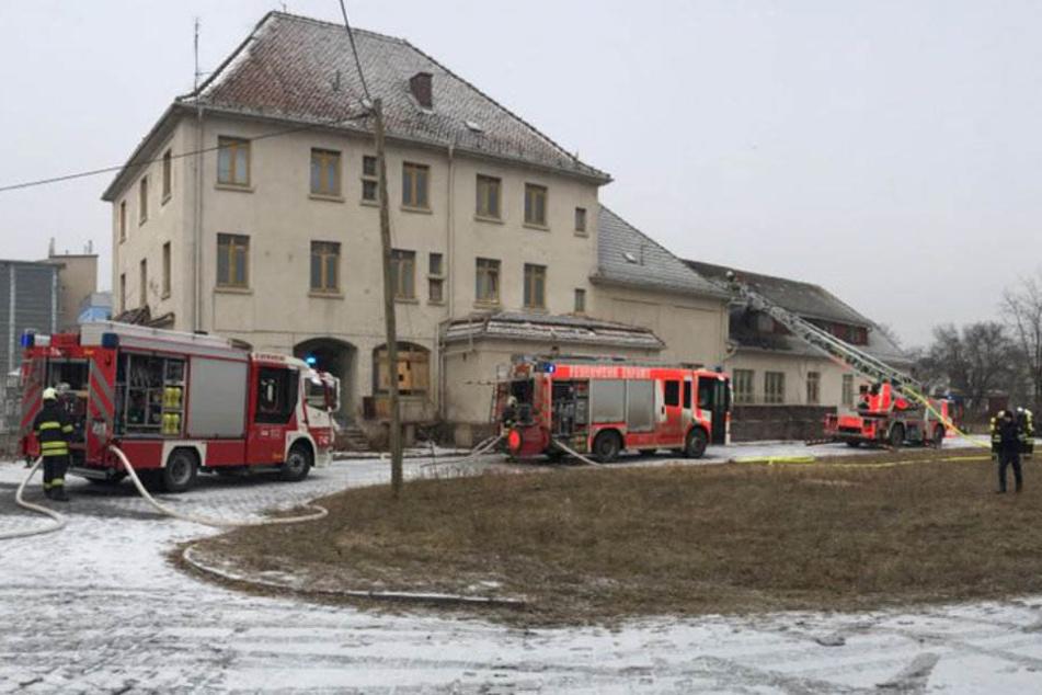 Mehrere Fahrzeuge von Berufsfeuerwehr und Freiwilliger Feuerwehr sind im Einsatz.