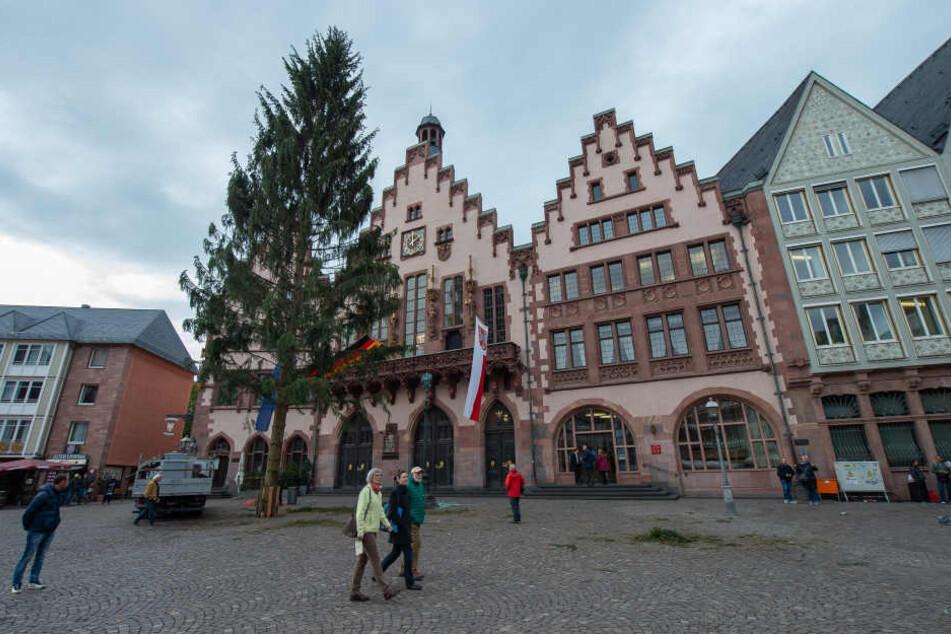 Der traditionelle Weihnachtsbaum steht schon seit Anfang November auf dem Frankfurter Römer.