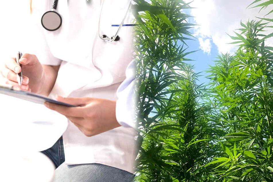 Cannabis als Heilmittel? Wissenschaftler haben herausgefunden, wie man die Krebs-Ausbreitung im Körper eindämmen kann (Symbolbild).