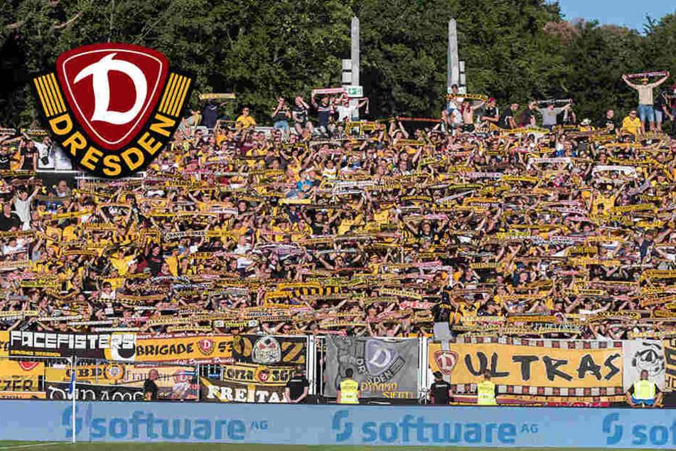 Dynamo-Fan schwerstverletzt: Bei Absturz soll Alkohol im Spiel gewesen sein