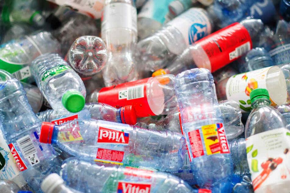 Über 600 Flaschen ließen die beiden mitgehen. (Symbolbild)