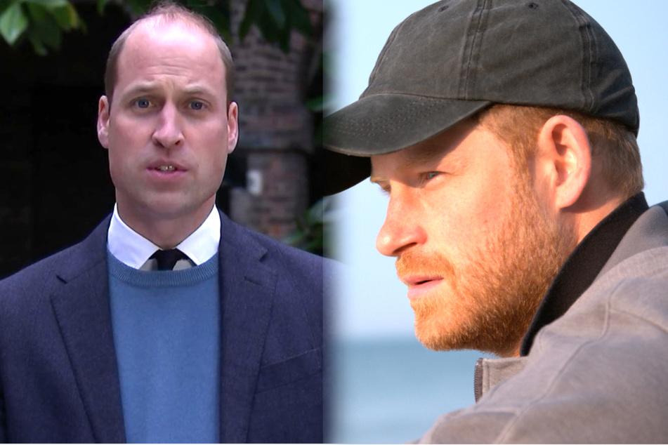 Erschlichenes Diana-Interview: Schwere Vorwürfe von Harry und William