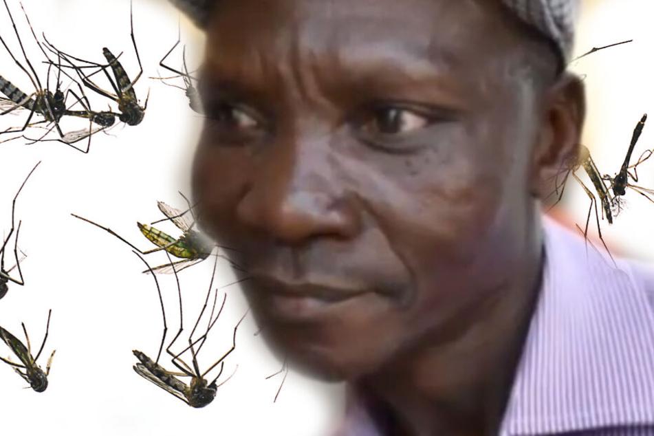 Seine Fürze lassen Moskitos sterben, die Malaria übertragen!