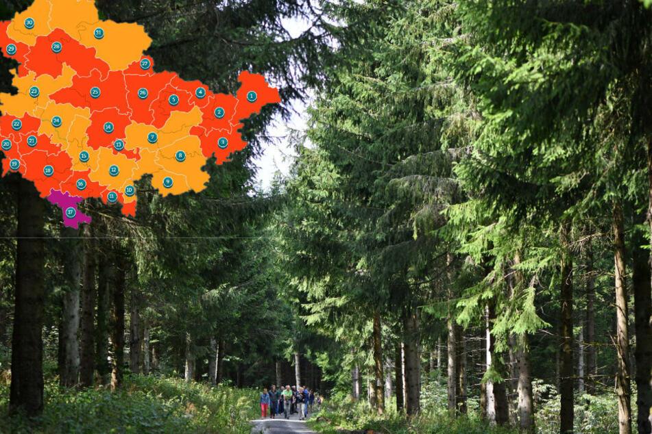 Thüringen: Waldbrandgefahr steigt weiter