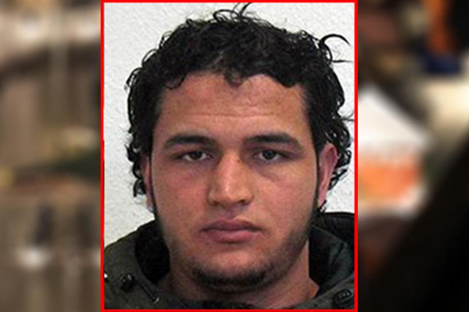Ermittler haben Kontaktmänner des mutmaßlichen Attentäters Anis Amri ins Visier genommen.