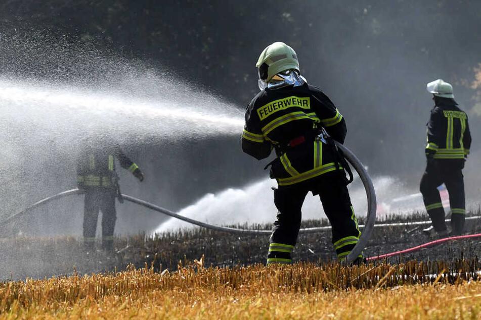 In Striegistal brannte ein Feld im Ortsteil Pappendorf.