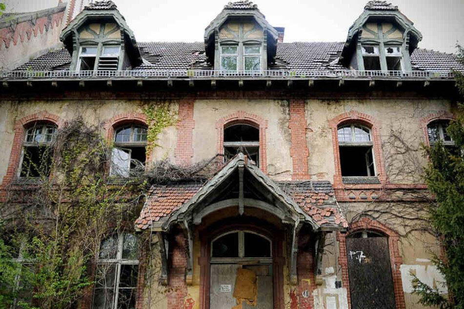 Ein verfallenes Gebäude auf dem Gelände der Beelitz-Heilstätten in Beelitz (Brandenburg)