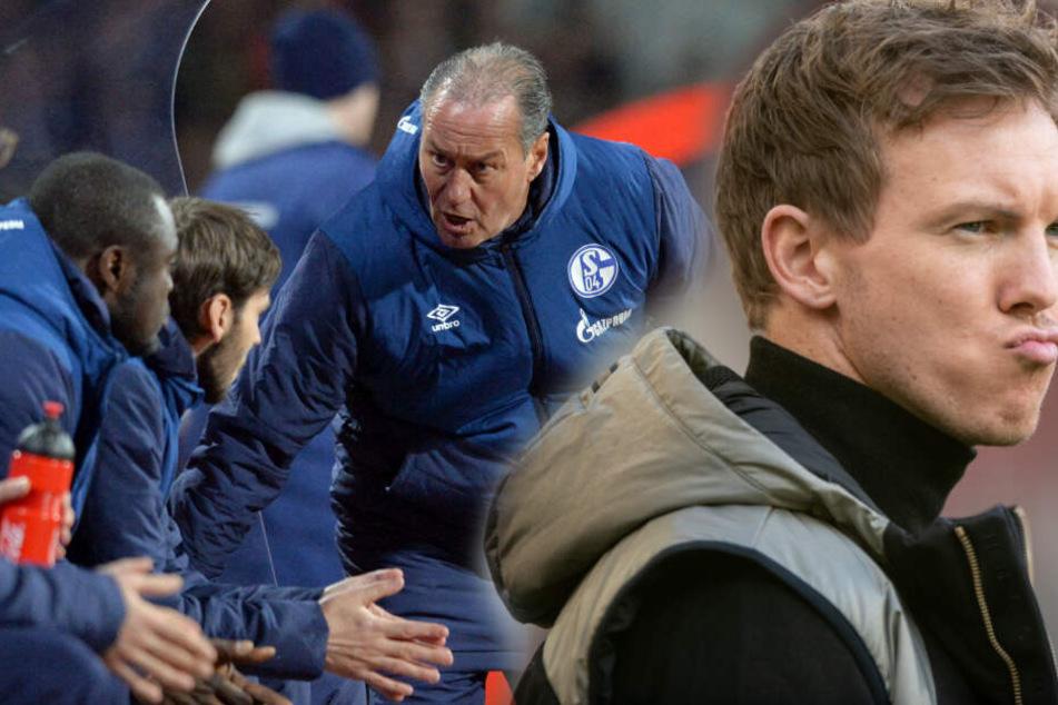 TSG-Coach Julian Nagelsmann (r) fordert Schalkes Kult-Coach Huub Stevens (l). (Fotomontage)