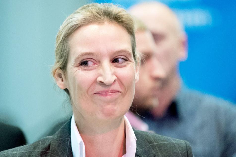Alice Weidel siegt vor Gericht gegen Facebook