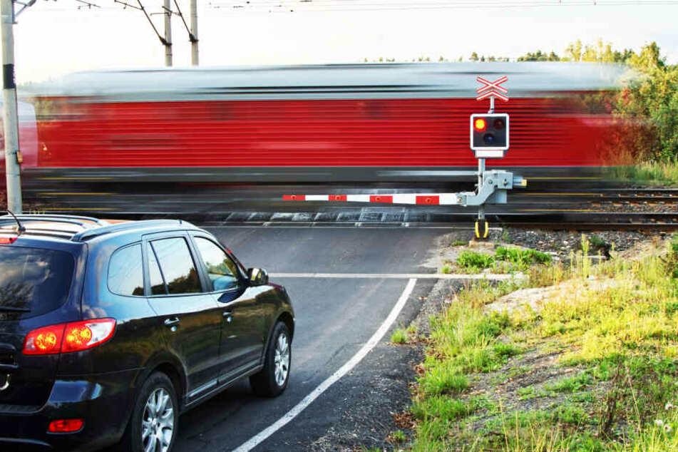 Hunde spielen am Bahnübergang, dann kommt ein Zug angebrettert