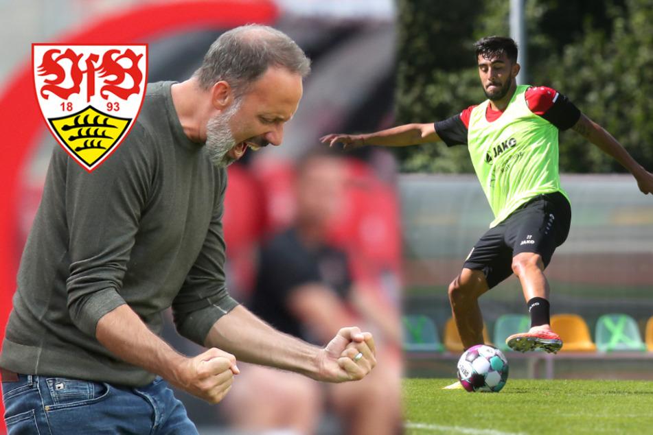 Gonzalez-Verbleib beim VfB Stuttgart? Matarazzo ist optimistisch