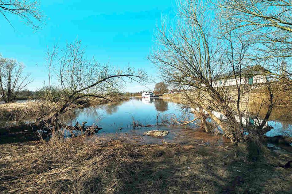 """Immer wieder bestreift die Wasserschutzpolizei den Elbabschnitt am """"Pier  15""""."""