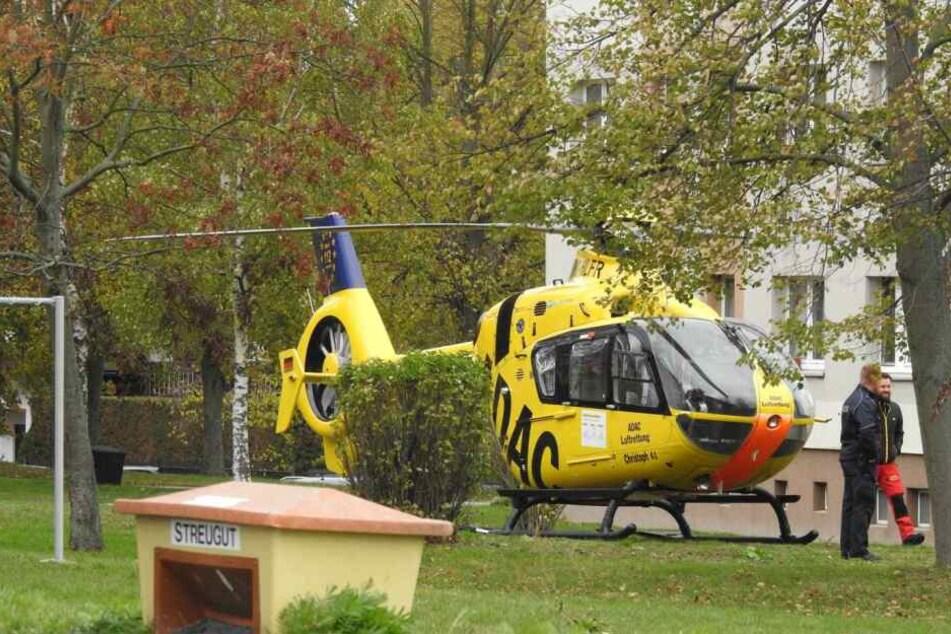 Ein Rettungshubschrauber brachte die Verletzte in ein Krankenhaus.