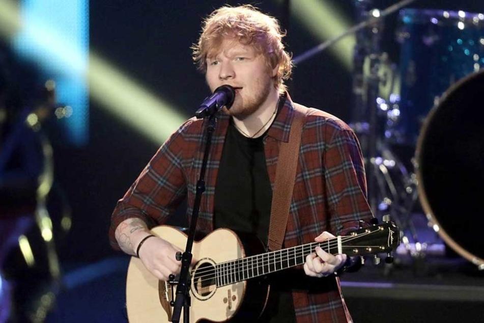 Ed Sheeran wird am 22. Juli im Ruhrgebiet auftreten, bis dahin müssen mehrere Vogelpaare umziehen.