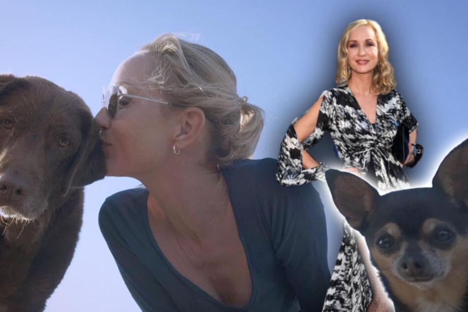 Isabella Hübner (52) liebt ihre Hunde Sam (l.) und Tyson über alles. (Bildmontage)