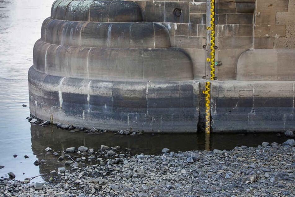 Nur noch 70 Zentimeter - so wenig Wasser führte die Elbe schon lange nicht mehr.