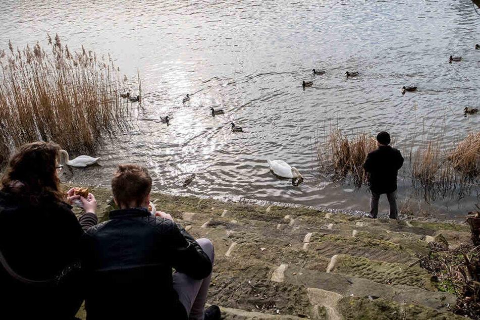 Wie der Mann genau in der Weser landete, ist unklar. (Symbolbild)