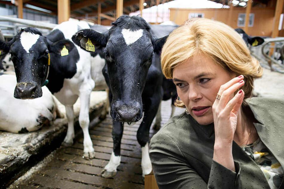 Agrarministerin Julia Klöckner (45) will den Tier- und Naturschutz stärken.