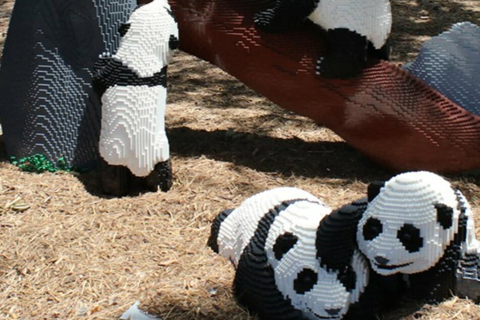 Aus der Ferne sehen die Panda-Skulpturen täuschend echt aus.