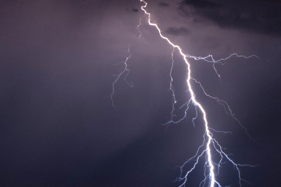 Mehrere Jugendliche wurden vom Stromfluss eines Blitzes erfasst. (Symbolbild)