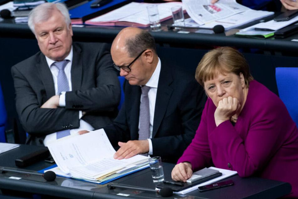 Neuwahlen oder GroKo? Das sagen die Deutschen