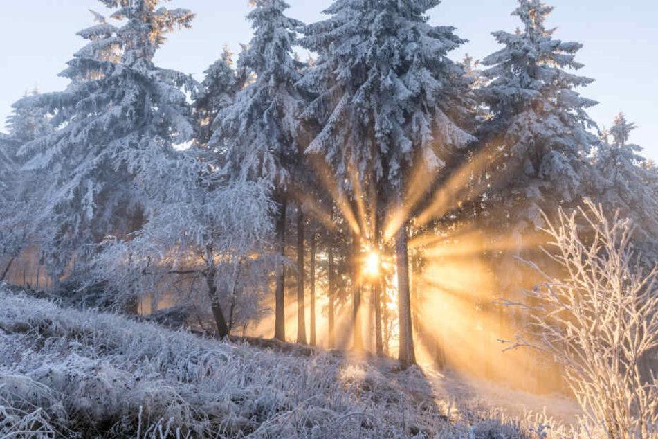 Wann Gibt Es Schnee