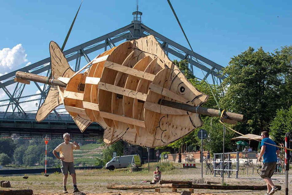 Der zum Transport in Einzelteile zerlegbare Riesenfisch wird heute Abend beim Drachenboot-Festival angezündet.