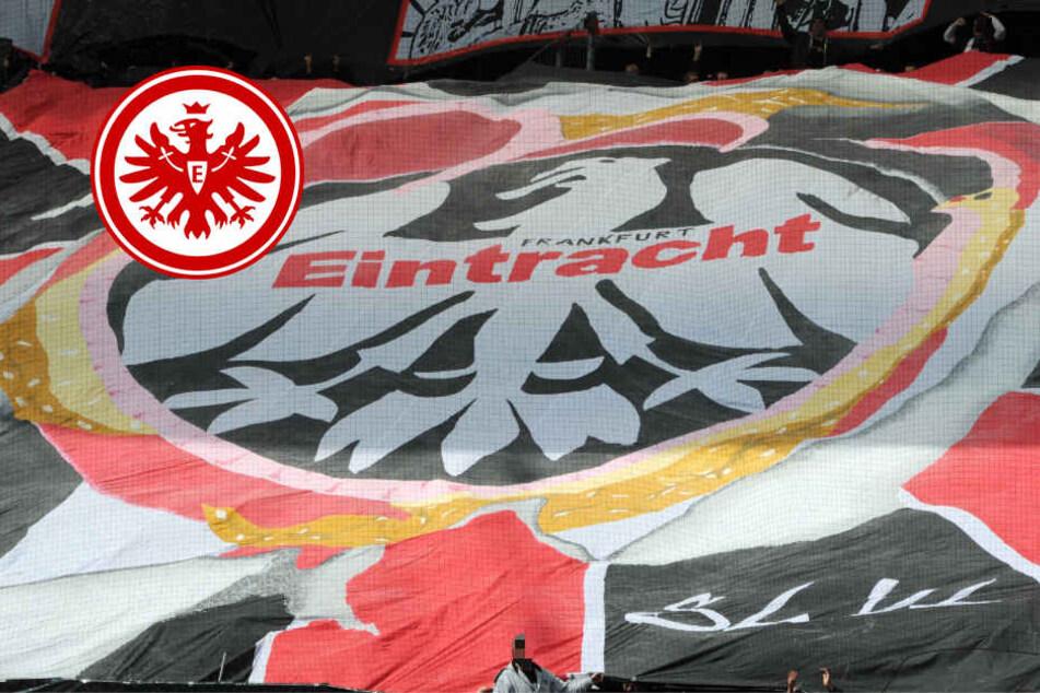 Nach Heimspiel: Eintracht-Fans greifen Wolfsburg-Anhänger an