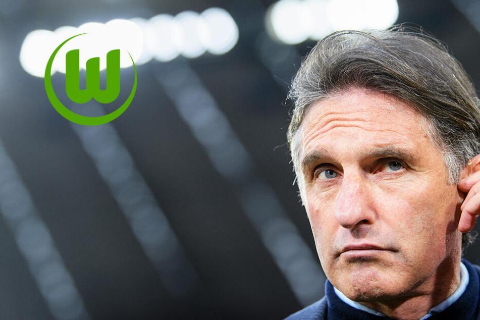 Offiziell: Labbadia macht zum Saisonende in Wolfsburg Schluss! Rose Nachfolger?