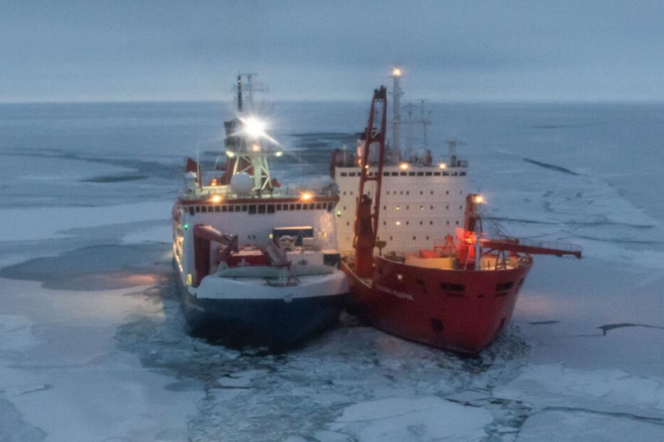 Die Polarstern (links) wurde anfangs von einem russischen Eisbrecher begleitet.