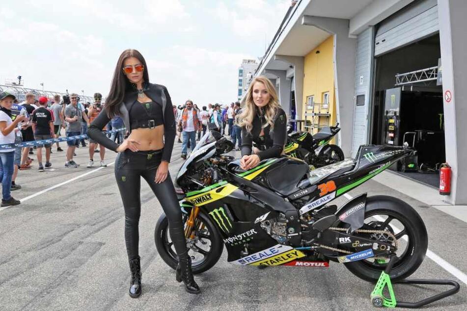 Heiße Reifen brauchen heiße Girls: Das Team vom Sachsenring sucht 20 Grid-Girls